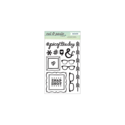 MME - Clear Stamp - Flair - Snapshots