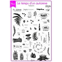 4enSCRAP - Tampons clear - Collection automne 2017 - Set no 111 - Le temps d'un automne
